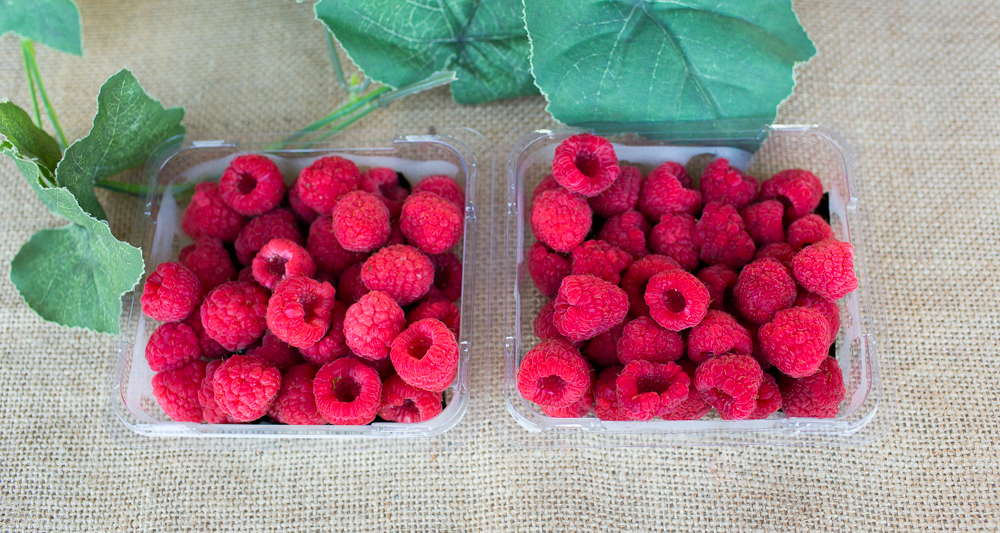 Tallogum Raspberries